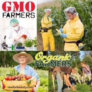 GMO vs Organic Farmers